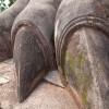 Sigiriya-Sculpture