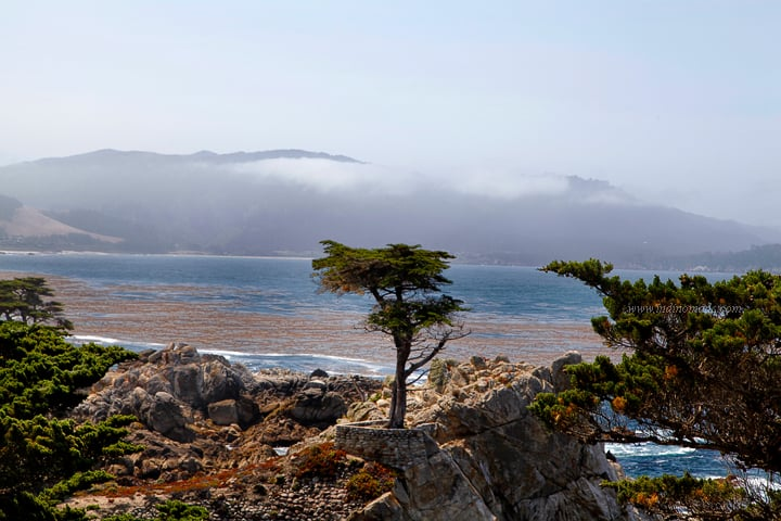 Monterey5psd