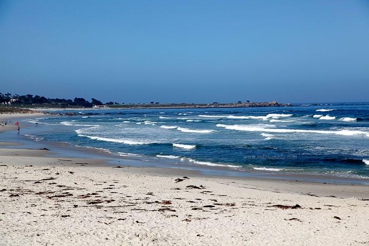 Monterey8