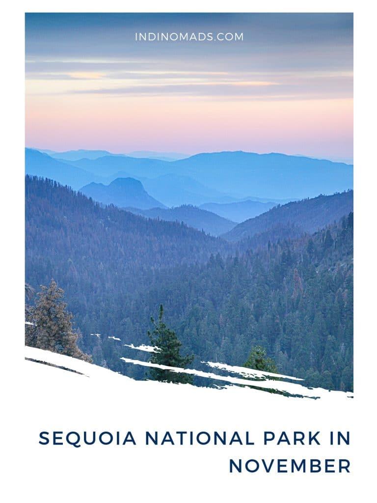 Sequoia National Park in November