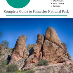 Visit Pinnacles National Park