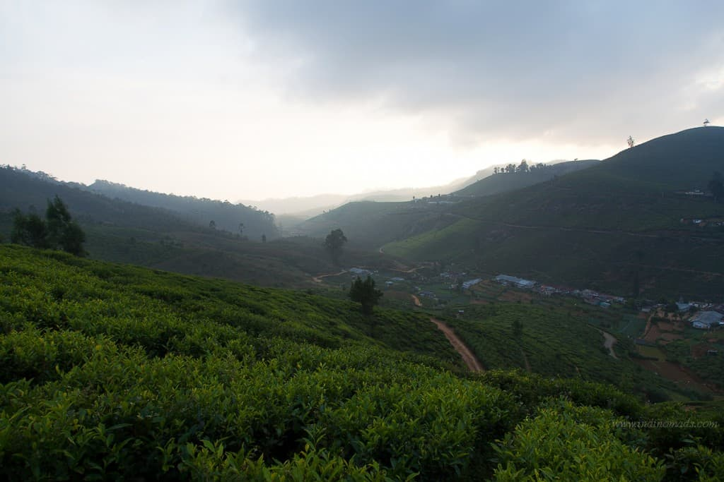 Things to see in Nuwara Eliya
