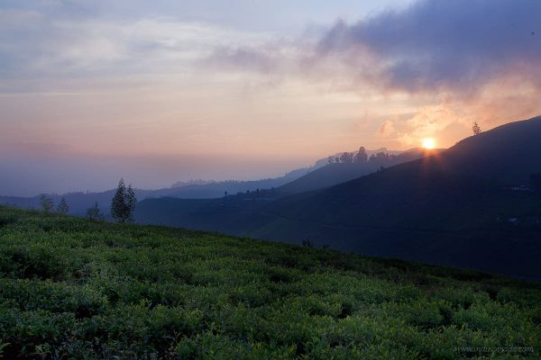 34 Incredible Places to Visit in Nuwara Eliya, Sri Lanka