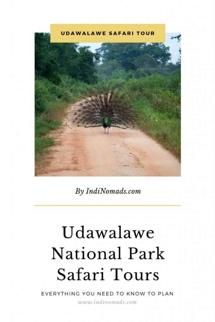 Udawalawe Safari Tour