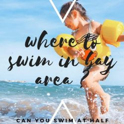 Can you swim at Half Moon Bay?