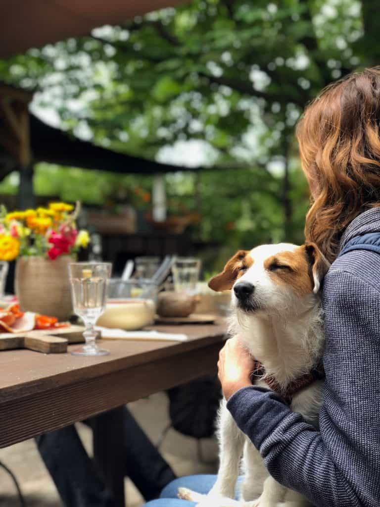Dog friendly restaurants in Estes Park