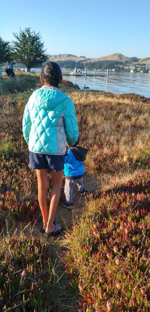 Bodega Bay Camping