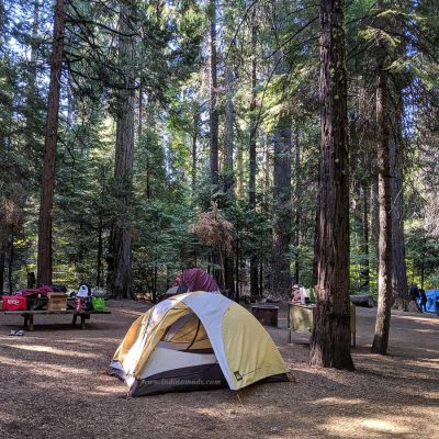 Calaveras Big Trees Camping – Must do with kids
