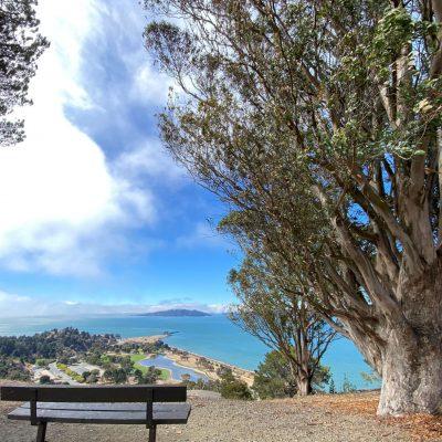 Bay Area Ocean View Hikes – Miller-Knox Hills Loop